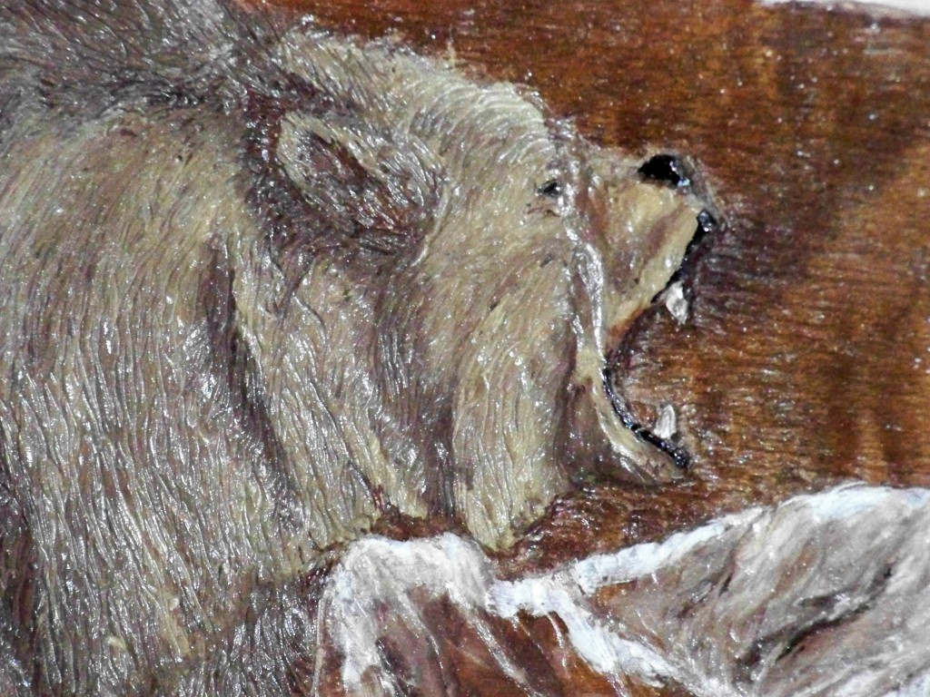 Grizzly close up image